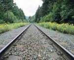 01rail_track