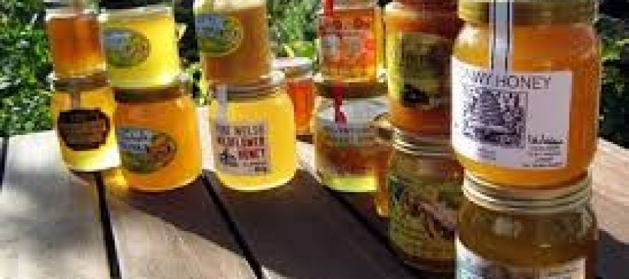Honey Mission Programme launched by KVIC being implemented to promote BEE keeping activities