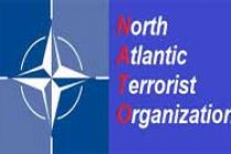 Russian forces involve in operations inside Ukraine: NATO