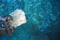India to mine Indian Ocean seabed for gold, silver