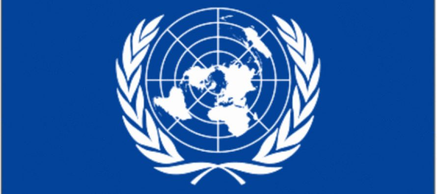 UN Security Council reform: Stick to a time-table, says India
