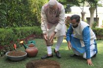 Modi plants sapling on World Environment Day