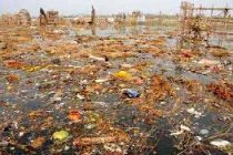 Yamuna will be clean in three years: Delhi minister