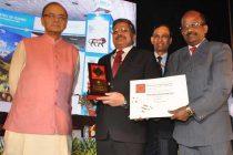 POWER Pavilion wins Gold Award at Trade Fair -2015