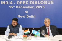 Current oil price slide will not continue: OPEC