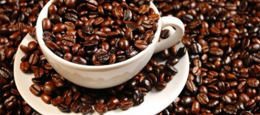 Colombia's 2015 coffee harvest largest in 23 years