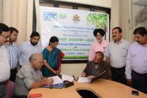 NTPC  to plant 10 million trees during 2016-17