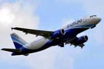 IndiGo's Q1 net profit up 37%
