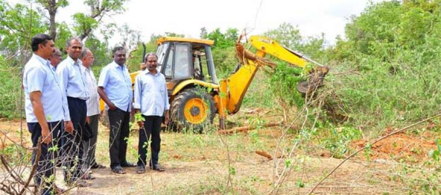 Initiative of Uprooting of Juliflora trees in Neyveli Township