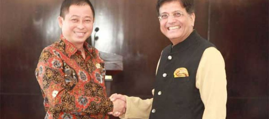 MoS for Power, Coal, New and Renewable Energy and Mines (IC), Piyush Goyal meeting the Minister of Energy and Mineral Resources of the Republic of Indonesia, Ignasius Jonan