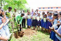 MRPL CSR Activity : 'Koti Vriksha Andolan' in Pejavara High School