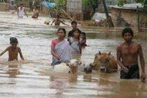 Assam floods: Ten more die, death toll reach 49