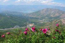 Ecological tourism in Uzbekistan