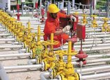 Govt to lift pricing curbs on domestically produced gas
