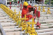 'Mozambique to become world's 2nd biggest gas exporter'