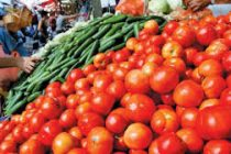 Once exploiters, truck drivers change the lives of Jharkhand's tomato growers