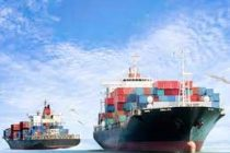 India's merchandise exports rose over 5% YoY in Jan