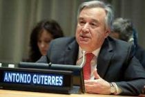 UN chief urges immediate action on climate change