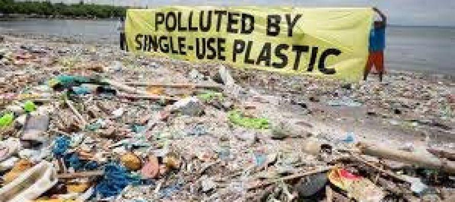Research shows how plastics threaten marine biodiversity