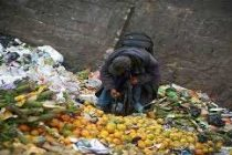 Delhi government drafts policy to check food wastage at social functions