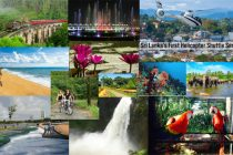 Over Rs 124 cr spent to promote tourism in 2017-20: Centre