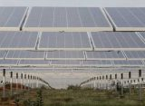 SJVN gets 1,000 MW solar power project