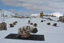 ITBP practices Yoga at 18,800 feet on India-China border