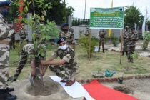 "Mass Tree plantation by CISF under the ""Mega Tree Plantation Drive"""