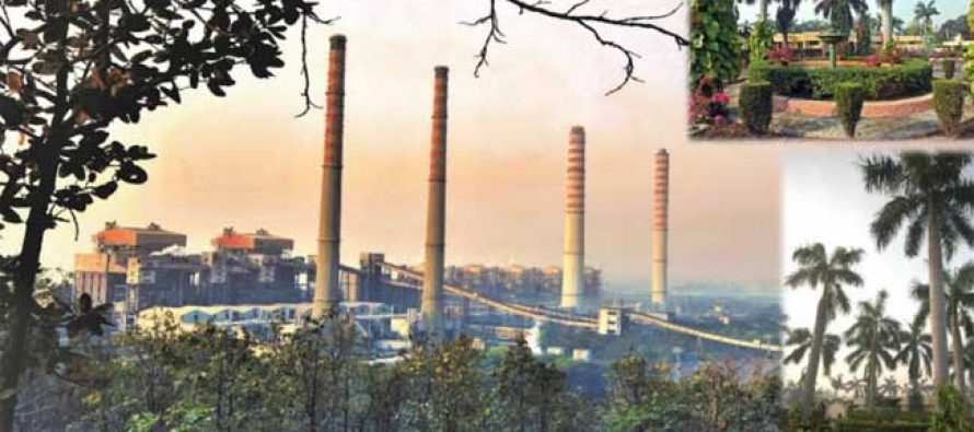 NTPC's oldest unit at Singrauli records highest PLF so far in current fiscal