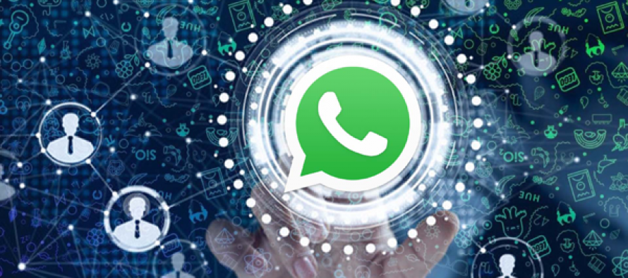 WhatsApp testing in-app business directory feature in Brazil