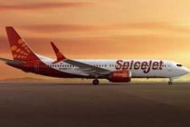 SpiceJet will launch 28 new domestic flights from Oct 31