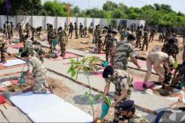 Mega Tree Plantation Drive by CISF: Planted 2.33 lakh (approx) saplings in a single day