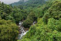 Kerala Tourism launches 'bio-bubble' model to woo tourists